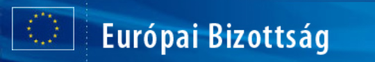 Az Európai Bizottság (EB)