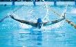 Tenni kell az úszótehetségek megtartása érdekében
