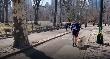 Három kutyával teljesítette a félmaratont egy vak futó