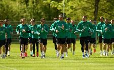 Megkezdte a felkészülést a magyar válogatott az Európa-Bajnokságra